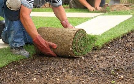 """Goed voorbereidend werk is essentieel voor het goed """"aanslaan"""" van een nieuwe grasmat."""